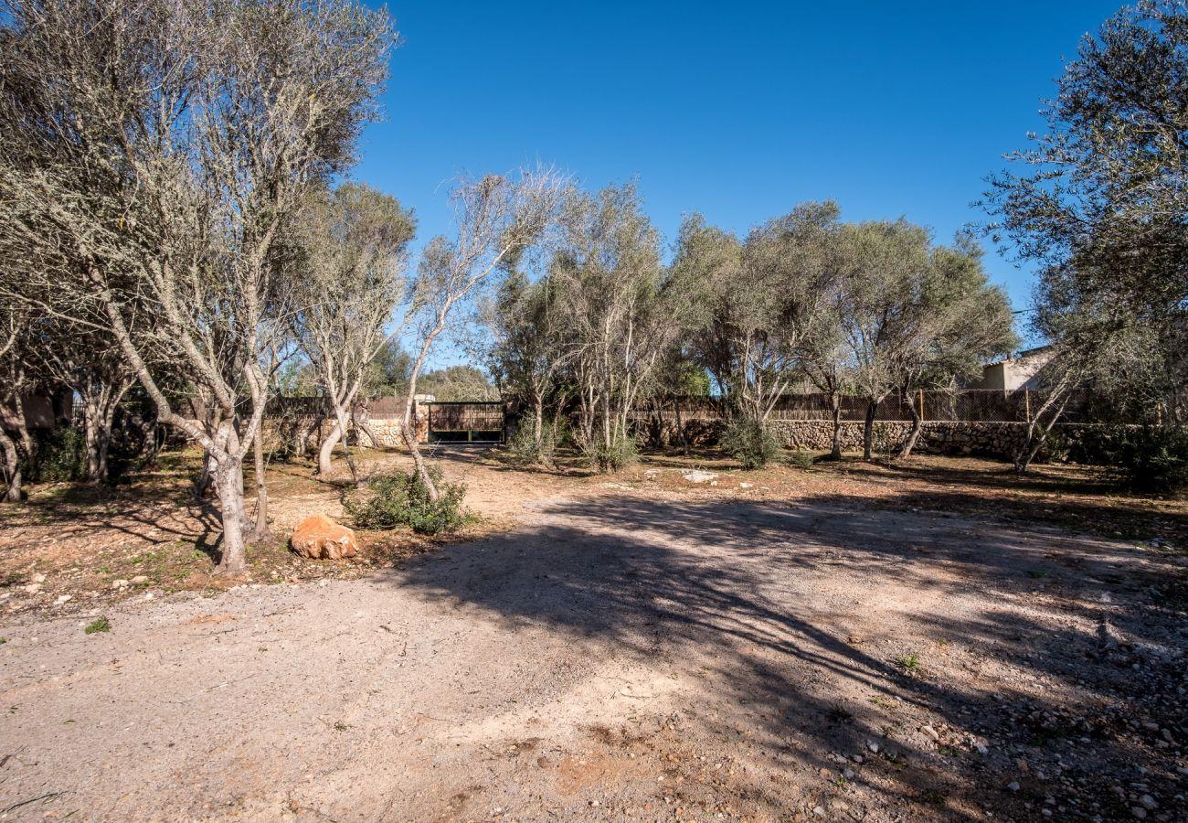 Casa rural en Santanyi - Son Sec
