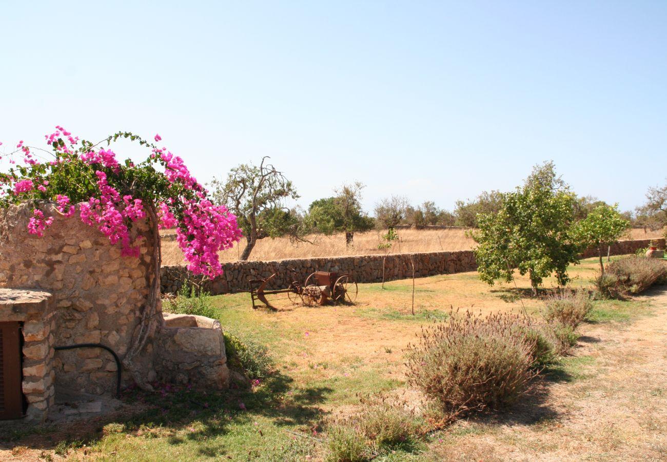 Landhaus in Calonge - Na Corma