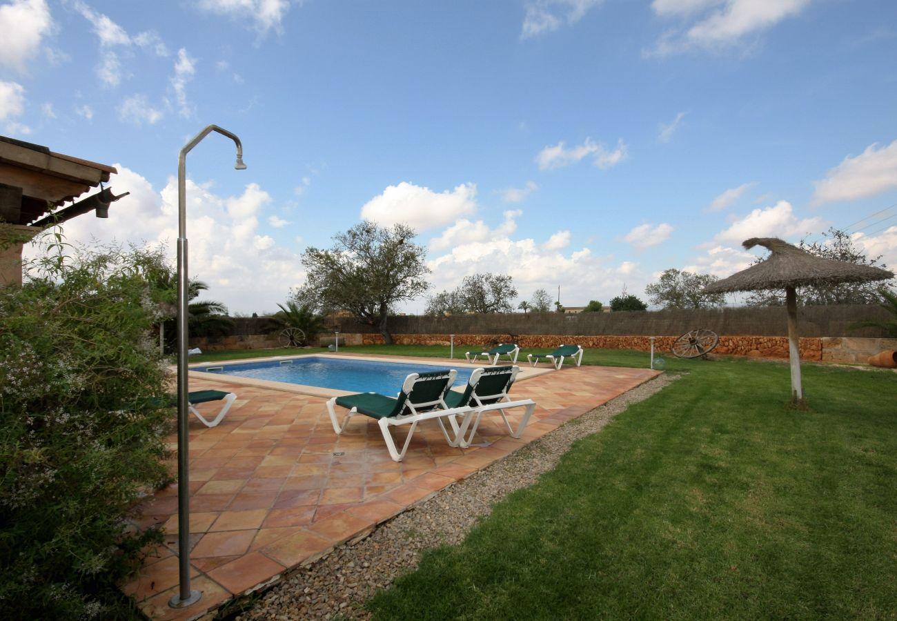Landhaus in Campos - Finca Rafel